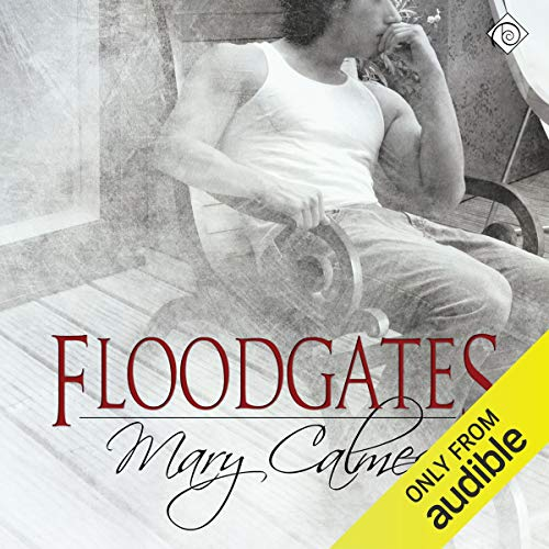 Floodgates cover art