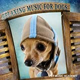 Relaxing Music for Dogs - Calm Down Your Animal Companion, Soothing Nature Sounds for Puppies & Cats