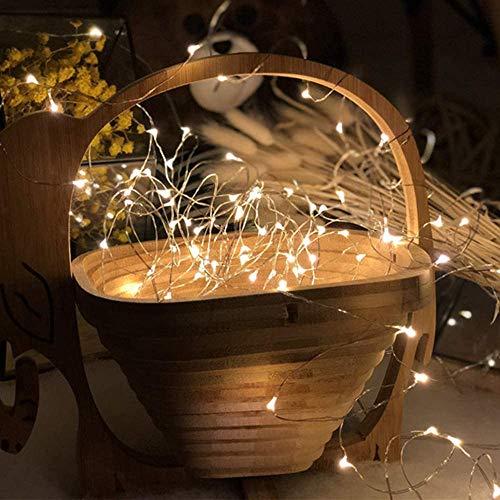 SALCAR LED colorati corda leggera a 10 metri / 33 piedi 100 diodi all\'interno filo di rame Micro per le feste di Natale per la decorazione di feste (bianco caldo)