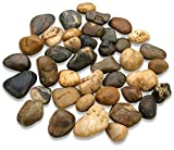 Katzco 2 Pounds Large Decorative River Rock Stones - Natural Polished Mixed Color Stones - Use in Glassware, Like Vases, Aquariums and Terrariums to Enhance The Appearance.