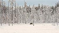 木製パズル300Pcs減圧玩具屋内ゲーム達成感のある装飾塗装 雪の上のオオカミ