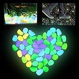 brillan en la oscuridad de piedra decorativa para la decoraci/ón de Pasarelas Luminoso Piedras para plantas de maceta 100 PC que brillan Jard/ín de piedras etc luminoso pl/ás Fish Tank