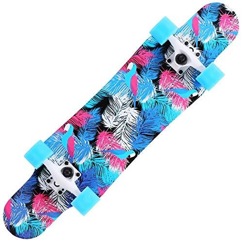 Longboards Skateboard – 78,7 cm Pro Small Longboard Carving Cruising Skateboard – für Erwachsene Jugendliche Kinder Anfänger Mädchen und Jungen (blaue Feder)