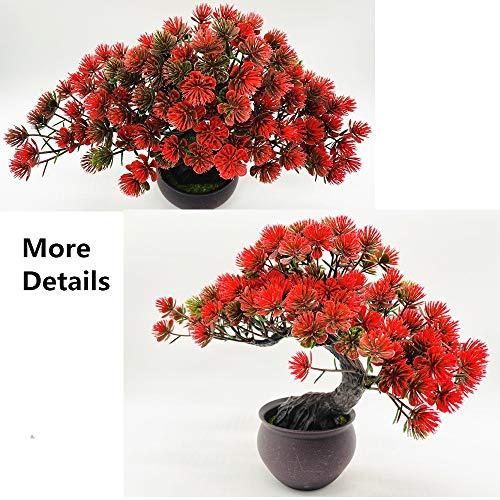 Fycooler Plantas