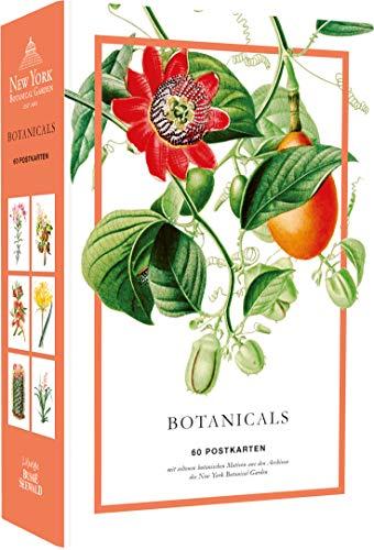 Botanicals. 60 Postkarten mit seltenen Motiven aus den Archiven des New York Botanical Garden: Hochwertige Kartonschachtel mit Deckel, 60 Postkarten, ... mit Motivdruck, Rückseite mit Adresslinien