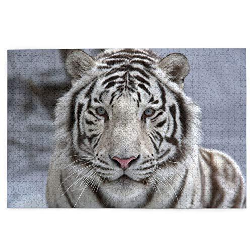 Rompecabezas de 1000 Piezas,Rompecabezas de imágenes,Retrato de Primer Plano de Tigre de Bengala Blanco,Juguetes Puzzle for Adultos niños Interesante Juego Juguete Decoración para El Hogar
