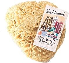Best natural sea sponge for car washing Reviews