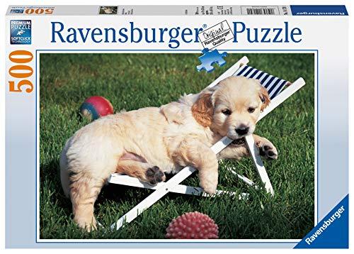 Ravensburger Puzzle, Puzzle 500 Piezas, Golden Retriver, Puzzles para Adultos, Puzzle Animales, Rompecabezas Ravensburger de Alta Calidad