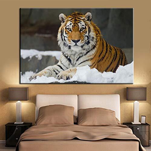 N / A Quadro Moderno Stampa HD Poster da Parete Stampato Il re della Foresta - Tigre per Soggiorno Decorazione Domestica della Parete No Frame 50x70cm