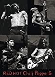 Close Up Red Hot Chili Peppers Poster (61cm x 86cm)
