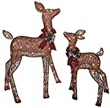 Pre-lit Glittering Brown Light Up Doe and Fawn Deer Santa Reindeer 2-Piece Lawn Yard Holiday Christmas Decoration