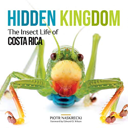 Hidden Kingdom: The Insect Life of Costa Rica (Zona Tropical Publications)