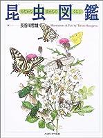 昆虫図鑑―みぢかな虫たちのくらし (しぜんのほん)