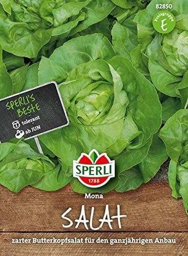 82850 Sperli Premium Kopfsalat Samen Mona | Zart | Große Köpfe | Kopfsalat Saatgut | Salat Saatgut | Butterkopfsalat Samen