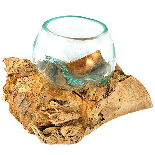 Wurzelvase Wurzel mit Glas klein Ø 8-10 cm Holzvase Kugelvase Holzdeko Vase auf Holz Teak