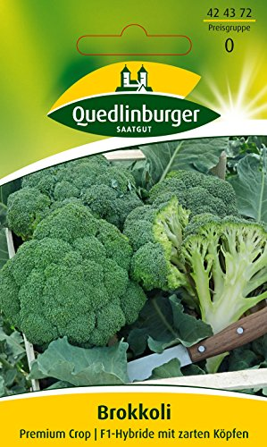 Broccoli 'Calabrais', 1 Tüte Samen