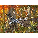 5D Pintura de Diamantes niños Adultos por Numero kits Bosque, besar, ciervos Bordado de Diamante Art Craft de cruz Punto lienzo Picture Manualidades para Decoración de Pared(80x120cm/32x48in)
