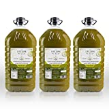 Aceite de Oliva Virgen Extra Premium Estirpe Sin Filtrar -PICUAL (15 Litros)