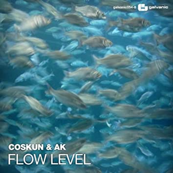 Flow Level