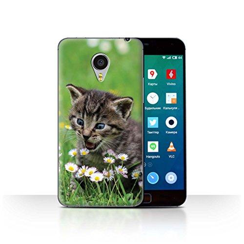 Stuff4® Hülle/Case für Meizu MX4 Pro/Inländisches Kätzchen/Blumen Muster Katze/Katzenrassen Kollektion