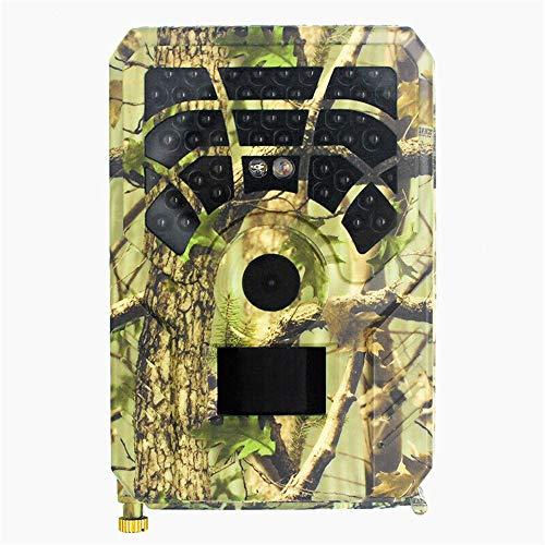 Tenglang Cámara de Caza 720P HD 12MP Trampa Visión Nocturna Cámara de senderos a Prueba de Agua Explorador Cazador de Vida Silvestre Cámara para la Vida Silvestre al Aire Libre, Jardín
