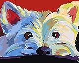 YUHHGFK DIY Pintura por Números Perro Animal Blanco Pint por Número de Kits con Pinceles y Pinturas para Adultos, niños y Principiantes Decoraciones Hogar - 40 X 50 cm (con Marco de Madera)