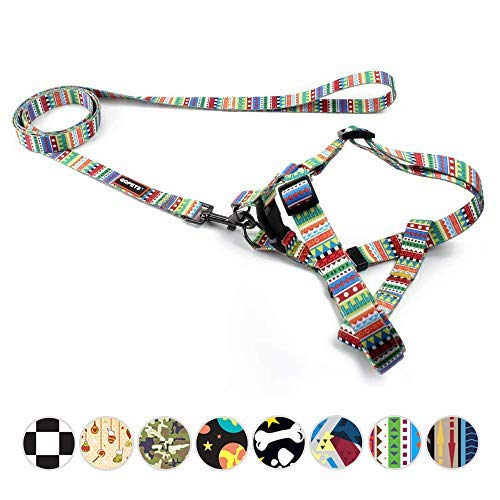 QQPETS No-Pull Dog Harness and Leash Set Durable Nylon Basic Halter Dog Harness for Large Breed Adjustable Chest Girth 23-32