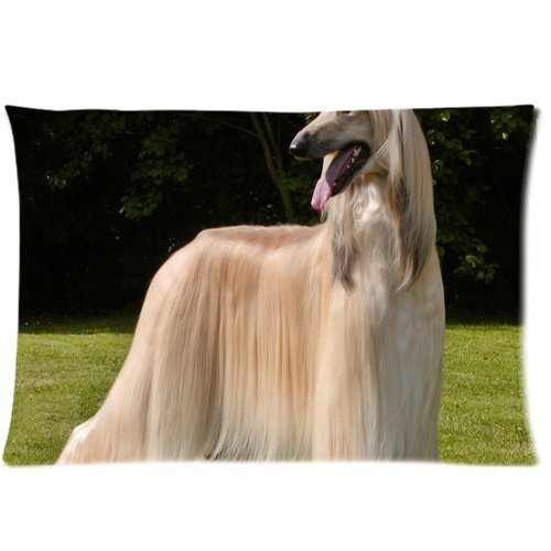 Lévrier Afghan Funny Animal Housse d'oreiller zippée 50,8 x 76,2 cm