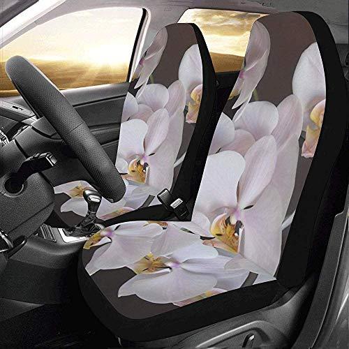 Enoqunt Juego de fundas para flores de orquídeas de automóviles Prot