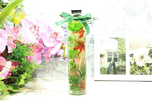 【BelindaBotanical】ハーバリウム300㎖六角瓶グリーン