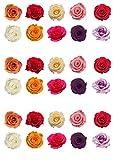 Top That 30Jolis Couleurs mélangées Rose Fleur en Papier Comestible pour décoration de gâteau