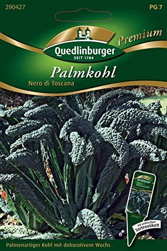 Palmkohl, Nero di Toscana, ca. 150 Samen