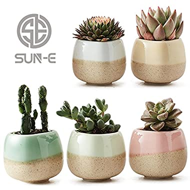 SUN-E 5 in Set 2.2 Inch Container Planter Ceramic Flowing Glaze Five Color Base Serial Set Succulent Plant Pot Cactus Plant Pot Flower Pot Perfect Gife Idea