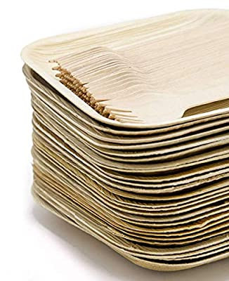 """Ecodesign Disposable 50-Piece Palm Leaf Dinnerware - Appetizer Sides Dessert 7"""" Plates Pack (25) w/ Wood Forks (25) - Compostable"""