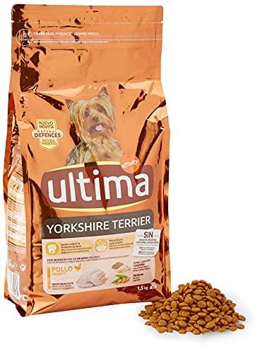 Ultima Lot de 4 x 1,5 kg de Nourriture pour Chien Mini Yorkshire avec Poulet – Total : 6 kg