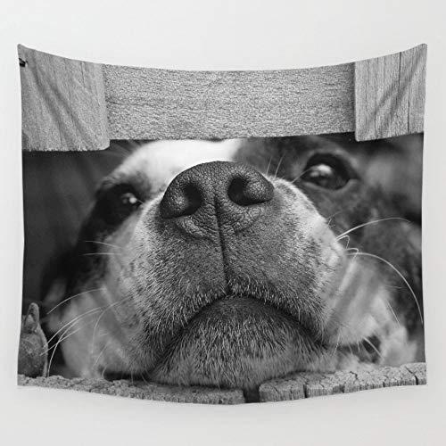 Wandtapijten, Hond In Hek Photo Print Stof/Weefsel, Indische Boheemse Hippie Vogue Leuke Huisdier Dier Grote Rechthoekige muur Art Decor Voor Dorm Woonkamer 150x200 cm