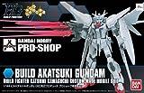 Bandai HG 1/144 scale model kit BUILD AKATSUKI GUNDAM PRO shop limited model