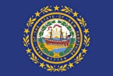 Toland Home Garden New Hampshire State Flag 28 x 40 Inch Decorative USA House Flag