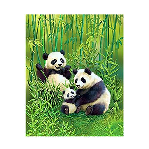 Malen Sie Nach Zahlen Für Erwachsene Kinder Panda Im Bambuswald 16 * 20 Zoll DIY Digital Malen Nach Zahlen Kits Auf Leinwand Junior Kinder Dekorationen Geschenke