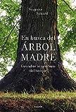 En busca del Árbol Madre: Descubre la sabiduría del bosque (Contextos)