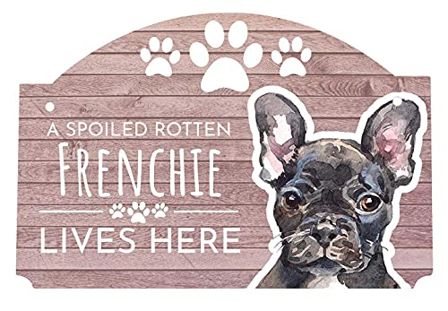 R and R Imports A Spoiled Rotten Frenchie French Bulldog Lives Here Decorative Watercolor 9 x 6 Inch Wood Sign with String