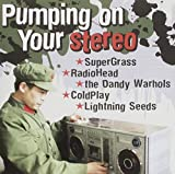 Zzvarious/Pumping On Your Ster