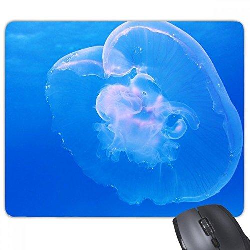 kwallen oceaan blauw water wetenschap natuur beeld rechthoek antislip rubber muismat spel muis pad cadeau