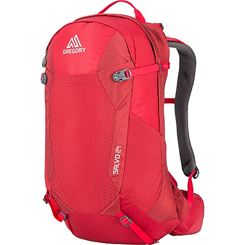 Gregory Mountain Products Men's Salvo 24 Liter Backpack, Tango Red, One Size