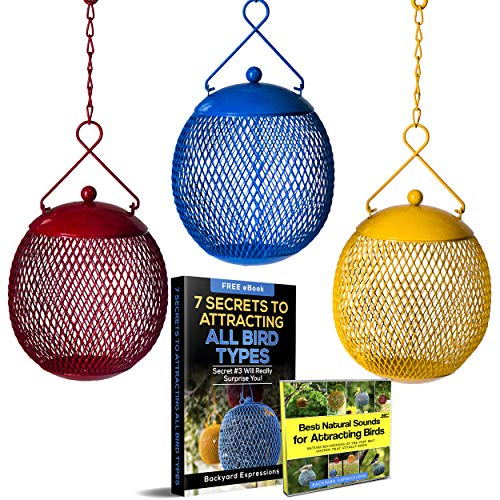 Backyard Expressions - Set of 3 Bird Feeders for Outdoors Squirrel Proof - Bonus Ebook and Bird...