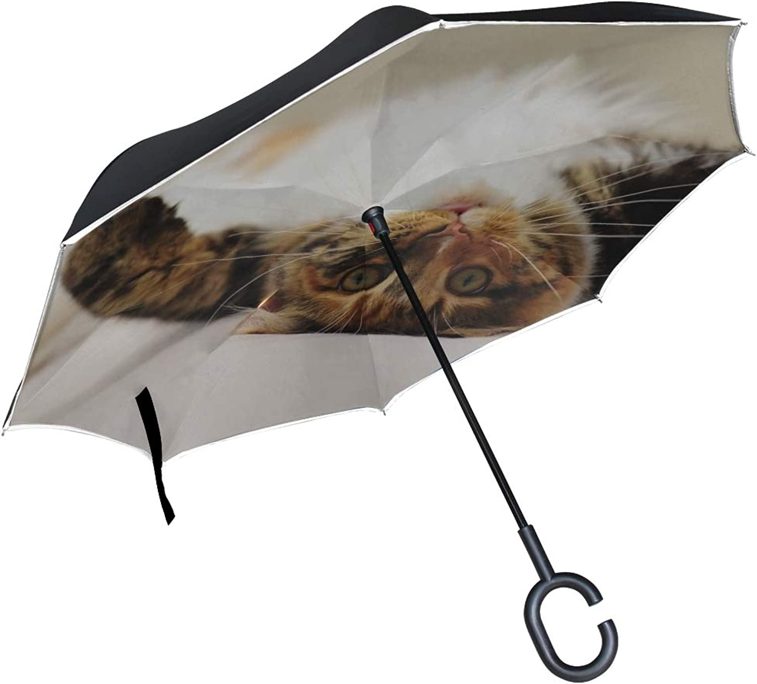 Rh Studio Ingreened Umbrella Cat Lie Paw Cute Spotted Playful Large Double Layer Outdoor Rain Sun Car Reversible Umbrella