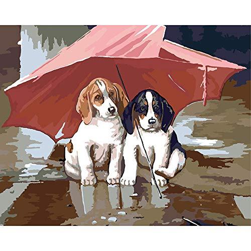 Doe-het-zelf schilderen, kits voor honden onder de paraplu, rood, digitaal schilderwerk, canvas, voor verjaardag, bruiloft, pasgeborenen, decoratie, geschenken