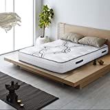 Spectra 12 in Medium Firm Mattress; Quilted-Top Pocketed Coil Orthopedic Mattress