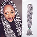 24' Braids Extensions Kunsthaar Jumbo Braids Crochet Hair Extensions Synthetik Braiding Hair 1Pcs 100g/Bündel 60cm Silber Grau