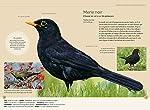 Reconnaître facilement les oiseaux du jardin - Photos grandeur nature #1